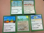 Planter Tags - Learning how to read seed packages and gather specific information